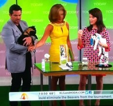 """National Geographic's Award-winning Cat Behaviorist and Feline Science Author Mieshelle on The Today Show.  Recipient of the """"Golden Purr Award"""","""