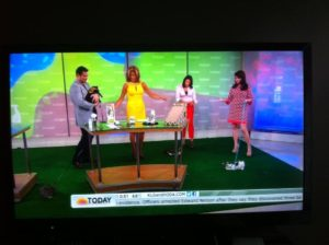 Cat Behaviorist on the Today Show