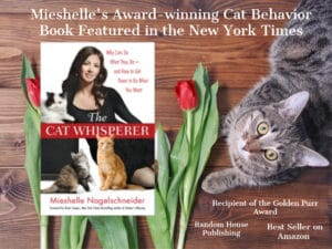 About Cat Behaviorist Mieshelle Nagelschneider