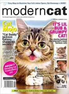 Modern Cat Magazine