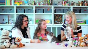 Los Angeles Cat Behaviorist