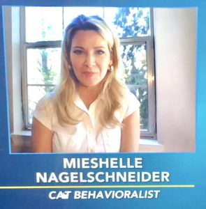 Cat Behaviorist during a cat meowing behavior issues consult