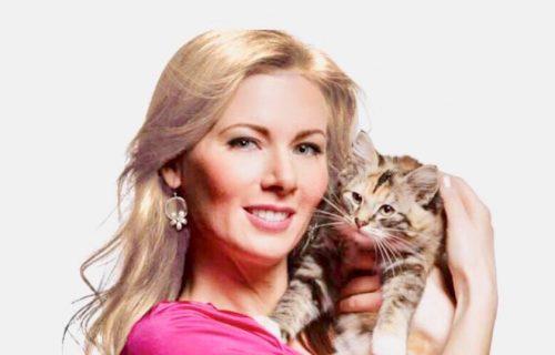 Cat Behaviorist The Cat Behavior Clinic