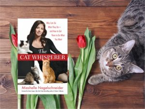 About Cat Trainer Book